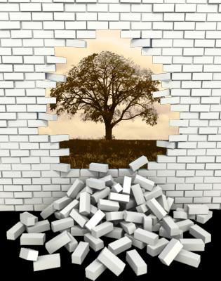 brick-wall-tree